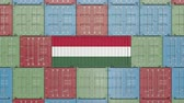 forwarder : Container with flag of Hungary. Hungarian import or export related 3D animation Stock Footage