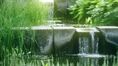 湿った : Small pond and waterfall in the park, shot on Red camera