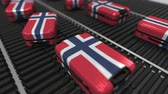 норвежский : Many travel suitcases featuring flag of Norway on roller conveyer. Norwegian tourism conceptual animation Стоковые видеозаписи