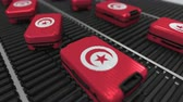 tunisian flag : Many travel suitcases featuring flag of Tunisia on roller conveyer. Tunisian tourism conceptual animation Stock Footage