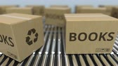 книги : Carton boxes with BOOKS text move on roller conveyor. Realistic loopable 3D animation Стоковые видеозаписи