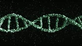genetics : Green DNA molecule model, loopable 3D animation