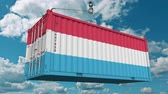 guindastes : Loading container with flag of Luxembourg. Luxembourgian import or export related conceptual 3D animation Stock Footage