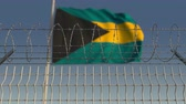 şaft : Flying flag of Bahamas behind barbed wire fence. Conceptual loopable 3D animation Stok Video