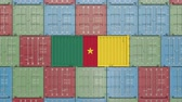 drapeau cameroun : Container with flag of Cameroon. Cameroonian goods related conceptual 3D animation Vidéos Libres De Droits