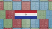 hurtownia : Container with flag of Paraguay. Paraguayan goods related conceptual 3D animation Wideo