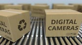 roller conveyor : Cartons with digital cameras on roller conveyors. Loopable 3D animation