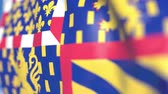официальный : Waving flag of Bourgogne-Franche-Comte, a region of France. Close-up, loopable 3D animation