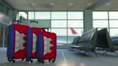 emigración : Travel suitcases with flag of Cambodia. Cambodian tourism conceptual 3D animation Archivo de Video