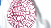 egyetemi : Flying flag with Uppsala University emblem, close-up. Editorial loopable 3D animation