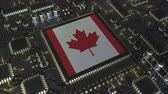 mikroprocesszor : National flag of Canada on the operating chipset. Canadian information technology or hardware development related conceptual 3D animation Stock mozgókép