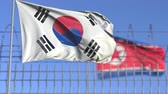 szálkás kalász : Waving flags of South Korea and North Korea separated by barbed wire fence. Conflict related loopable conceptual 3D animation