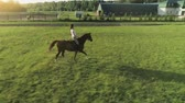 dressage : A young woman rides trotted on a brown horse a sideways to the camera, slow motion