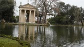 volaille : Geese and ducks at the lake of Villa Borghese in Rome, fed by tourists Vidéos Libres De Droits