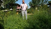jardineiro : A guy in a pink T-shirt mows the grass with an electric scythe
