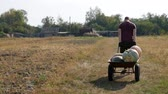 kruiwagen : A man drags his own hands on a wheelbarrow vegetables from the field. Sunny day. Work with his hands Stockvideo