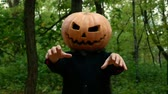 Halloween pumpkin head faces in the autumn forest moves like a zombie