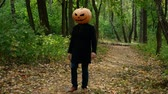 Jack Pumpkinhead walks through the woods, Guy puts a real pumpkin on his head. Halloween concept Dostupné videozáznamy