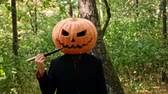 Jack Pumpkinhead stands in the forest, fumbling with a knife near his face. The guy puts a real pumpkin on his head. Halloween concept Dostupné videozáznamy