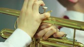 тон : Mans hands playing a wind instrument Стоковые видеозаписи
