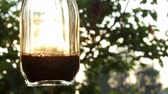 food and drink : Sun rays are going through the Bottle With Liquid in a hand
