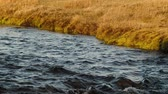 smooth water : Video of a gently rippling river. HD slow motion video