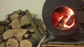 Wood burning stove in the open, lie near the wood stove Wideo