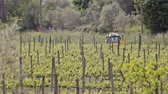 pesticide : Tractor in the vineyard Stock Footage
