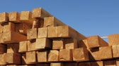 parting : Wood chips stacked in construction yard pan  tilt. Stock Footage