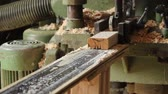 parting : Wooden bar comes from wood grinding machine, dolly shot