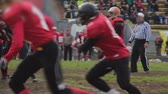 gridiron : Professional football players passing ball in field, fighting to win match Stock Footage