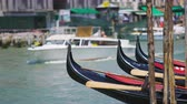 majestic : Water taxi carrying tourists in Venice, gondolas parked along canal, sightseeing