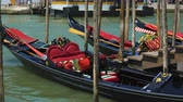 parked : Romantic gondolas moored at Grand Canal, traditional venetian transport, travel Stock Footage