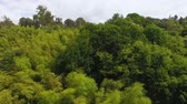 konzervace : Lush greenery covering hillsides of park, national sanctuary, preserving nature Dostupné videozáznamy