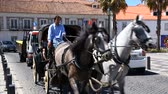 средство : Cars and cart with horse going along narrow street in city, urban transportation