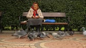 sivrilmek : Aged lady sitting on bench feeding pigeons with bread, white bird standing out