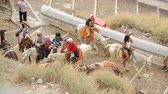 средство : Tourists sitting on donkeys and going up cobbled road, local attraction, tourism