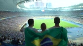 supporteur : Football fans with Brazilian flag jumping at stadium, cheering for national team