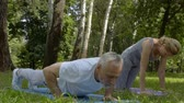 yoga mat : Active senior people doing push-ups and yoga asanas in park.