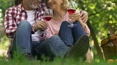 korumalı : Old couple drinking wine in park, travel in retirement age, secure future