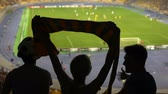 grand corbeau : Friends supporting soccer team, watching football match at stadium, sports