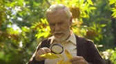 uzun ömürlü : Old man studying autumn leaf with magnifying glass, natural extracts, longevity