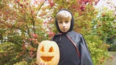 manto : Boy in Halloween costume holding pumpkin jack-o-lantern, alone in forest. Vídeos