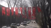 ulusal bayrağı : Turkish flags hanging on trees along street of Istanbul, patriotism, referendum Stok Video