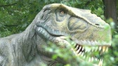 t rex : Jurassic prehistoric carnivour predator dinosaur, archaeology and paleontology