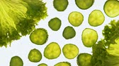 sicurezza alimentare : Processing cucumbers and lettuce with light, control of nitrate in vegetables Filmati Stock
