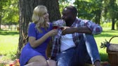 multirracial : Happy lovers celebrating anniversary in park, enjoying wine and picnic, toasting