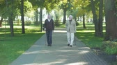 umírající : Two elegant senior men walking at day in park, one male disappearing, memories