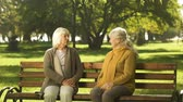 delighted : Two grandmothers talking, friendly sitting on bench in park, old golden years Stock Footage