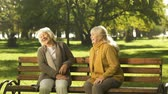 fofoca : Two old fiends talking and laughing sitting on bench in park, retirement age